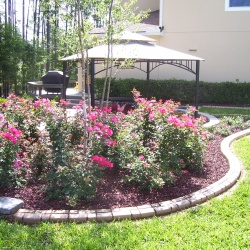 Enhancing-The-Beauty-Of-Your-Landscaping-Is-The-Essence-Of-Concrete-Edging