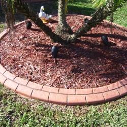 This-Brick-Look-Concrete-Curb-Is-Simple-Yet-Eleegant-1
